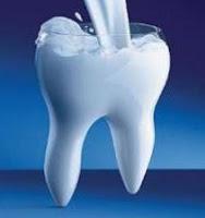 dente_de_leite