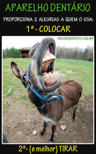 demotivational-cavalo-aparelho