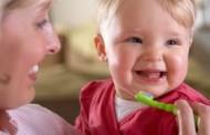 Dente-de-Leite #11 – Se o bebê não tem dente, não precisa escovar, certo???